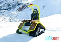 Кресло-снегоход Ziesel