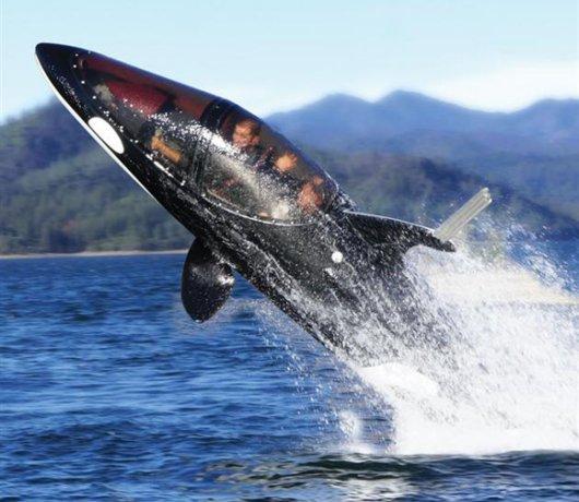 Seabreacher Shark Boat